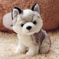 Lovely Simulation Husky Dog Stuffed Animals Plush Toys Cushions Gifts Plush Animals speelgoed FCI#