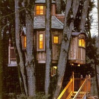 outdoor living areas / tree house