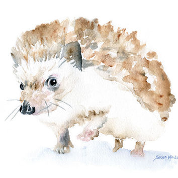 Hedgehog Watercolor Note Card Set of Six