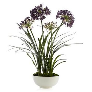 Faux Potted Agapanthus | Amethyst | Color Guide | Trends | Z Gallerie