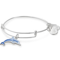 Dolphin Charm Bangle | Association Of Zoos And Aquariums