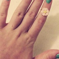 Pink daisy above the knuckle ring from larylarxo