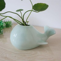 Lovely Whale Ceramic Flowerpot 2 Color Planter On Sale Cute Succulent Plants Flower Pot