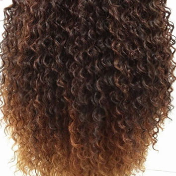 Long 15 inch Curly Dark Brown and Auburn Ombre Wig. Heat Resistant Wig. [32-184-Spice-G2733]