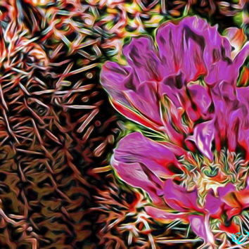 Strawberry Hedgehog Cactus Flower Arizona Abstract Art Print,Photography, Wall Art Decor, Southwest Art, Arizona Landscape Art