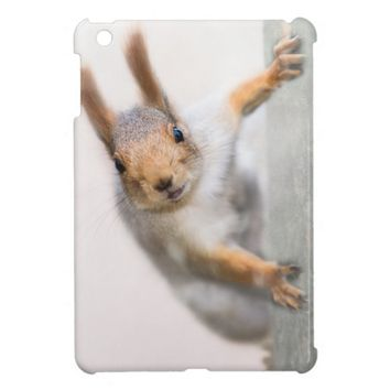 Curious squirrel iPad mini cases