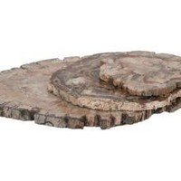 PETRIFIED WOOD TRAYS | tabletop | accessories | Jayson Home  Garden