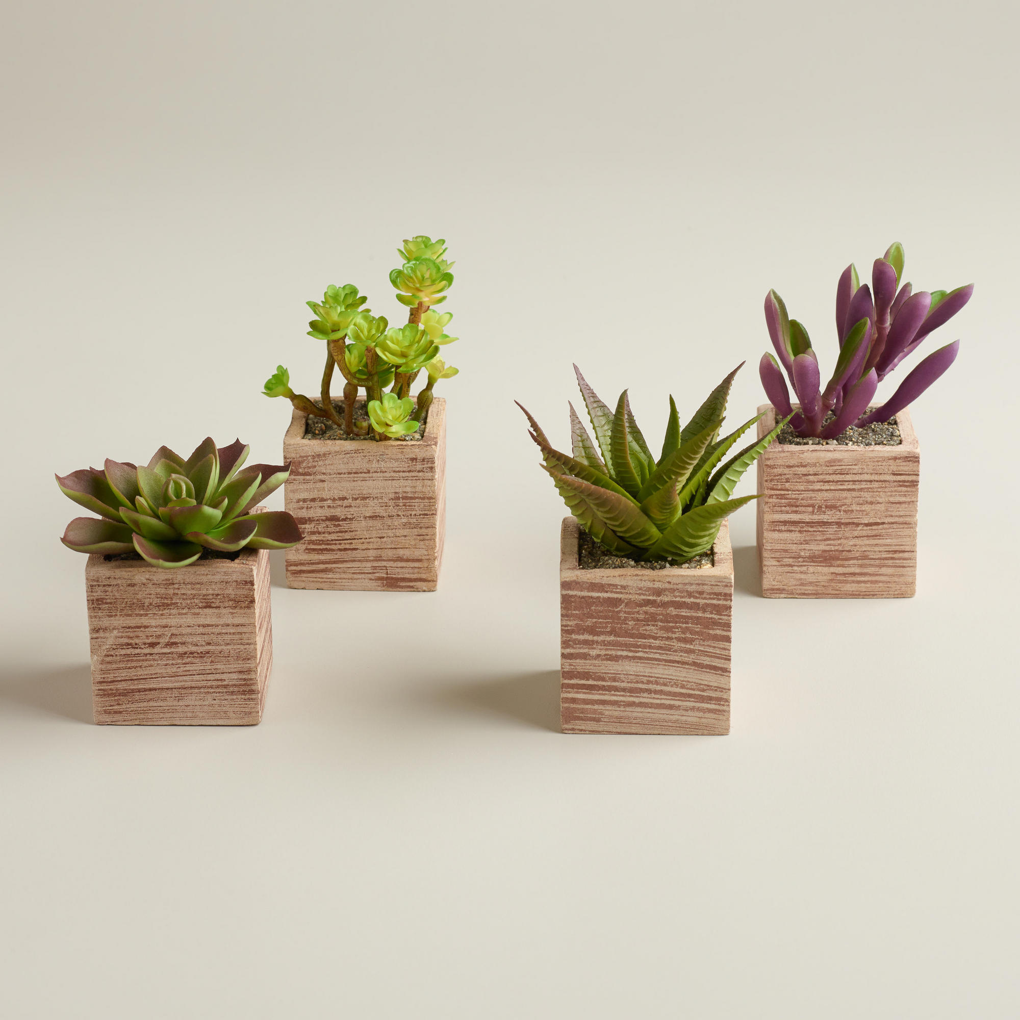 Mini Succulent Pots Set Of 4 World From Cost Plus World