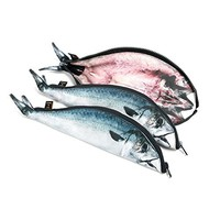 Mackerel Fish Zipper Pouch Weird Pen Pencil Case