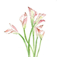 Calla Lily bouquet original watercolor painting, pale pink , green, romantic, wedding gift, mother day, cottage chic