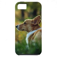 Corgi iPhone 5 Case from Zazzle.com