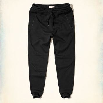 Guys Hollister Neoprene Jogger Pants | Guys Bottoms | HollisterCo.com
