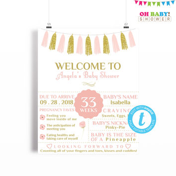 Baby Shower Chalkboard Sign, Pink and Gold Baby Shower Welcome Sign Template, Girl Baby Shower, Printable Sign, 16x20 Template Instant TASPG