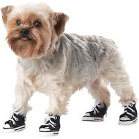 petco.com - Petco Wag-a-tude Navy Tennis Shoes for Dogs customer reviews - product reviews - read top consumer ratings