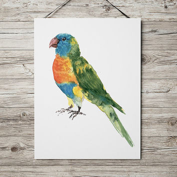 Rainbow lorikeet poster Nursery watercolor Cute bird art print ACW146