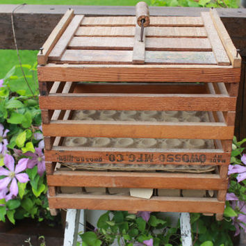 vintage wooden antique egg crate, Owosso Mfg egg crate, Vintage Humpty Dumpty primitive egg crate w/ cardboard trays, rustic farmhouse decor