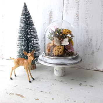 Vintage Cloche w Woodland Butterfly Collection. Woodland Fairy. Altered Romantic Shabby Cottage Decor. Taxidermy Natural History
