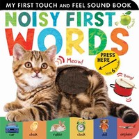 Noisy First Words Book