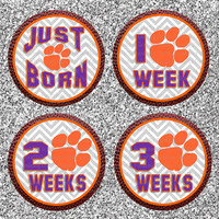 Baby Month Stickers...Photo Prop...Clemson University Tigers...Football...Baby Boy Sports...Milestones, Firsts - Favorite Baby Shower Gift