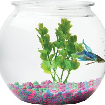 Fish Bowl Sphere - Plastic 1 1/2 Gallon