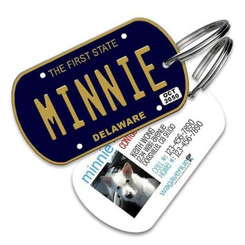 Delaware License Plate Pet Tag