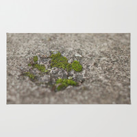 Set in Stone Area & Throw Rug by Dena Brender Photography