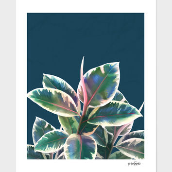 «plant leaves» Art Print by Jace Anderson - Numbered Edition from $24.9 | Curioos