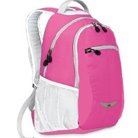 High Sierra Curve Backpack (18.5 x 12.5 x 8.5-Inch, Pink)