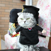 Whimsy! Bacherlor's clothing For Small Cat Costumes Graduation Pet cat clothes Dog bachelor's clothing doctorial hat S M L XL
