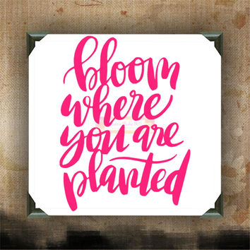 Bloom where you are Planted - Painted and Decorated Canvases - wall decor - wall hanging - custom canvas - inspirational quotes on canvas