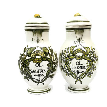 Pair of Apothecary Jars. Pharmacy Jars. Ceramic Apothecary Jars.