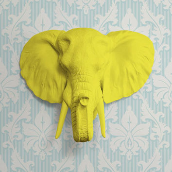 The Large Savannah Yellow Faux Taxidermy Resin Elephant Head Wall Mount | Yellow Elephant w/ Colored Tusks