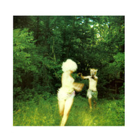 The World Is A Beautiful Place And I Am No Longer Afraid To Die - Harmlessness Vinyl LP Hot Topic Exclusive