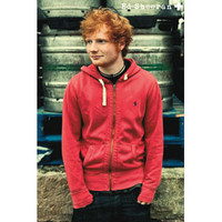 Ed Sheeran Domestic Poster