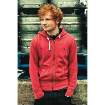 Ed Sheeran - Domestic Poster