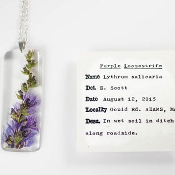 Purple Loosestrife (Lythrum salicaria) Botanical Jewelry, Wildflower Necklace, Gifts for Gardeners, Herbarium Pendant, Floral Necklace, Folk