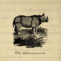 Digital Graphic Antique Rhino Illustration Printable Rhinoceros Image Download Vintage Clip Art for Transfers etc HQ 300dpi No.919