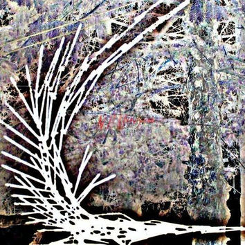 Alien Spacecraft in the Woods, Original Art, photograph, one of a kind, Abstract, Sci Fi,