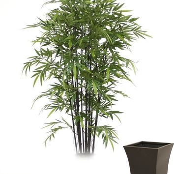 8' Black Bamboo Tree In Tall Flared Graphite Metal Planter