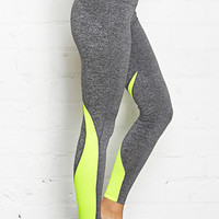 Mesh Paneled Sport Leggings