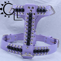 Violet Large Leather Dog Harness with Black Pyramids