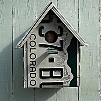 Upcycled Colorado License Plate Birdhouse - The Bird Lover's Essential