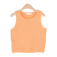 Colored Lady Knit Vest