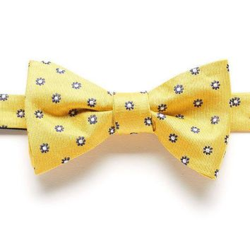 MDIGPL3 Bow Tie Tuesday Patterned Pretied Bow Tie - Men Size One