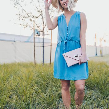Everly: Garden Party Dress in Blue