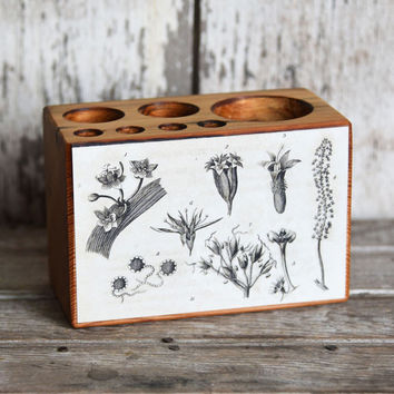 Botanical Desk Caddy