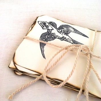 Shabby Chic Note Cards ~ Set of 10 ~ Paper Rustic Burnt Edge Aged Sparrow Lace French Provencal Wedding Advice