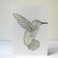 Care Collection - Hummingbird - Ecological Green Environmentally Friendly Recycled Paper Greeting Card