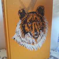 Children's Book, Story Book, Books For Kids, Books For Children, Vintage Book, Used Book, Old Book, Lassie Come Home by Eric Knight