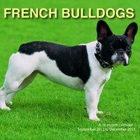 French Bulldogs 2013 Wall Calendar